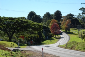 Montville - autumn colours