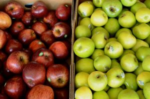 Apples Stanthorpe