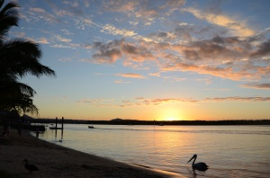 Campervan Converts - Noosa sunset